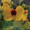 panfleto 38° Encontro Regional de Botânicos